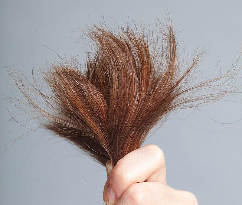 Tại sao tóc của bạn bị khô xơ?
