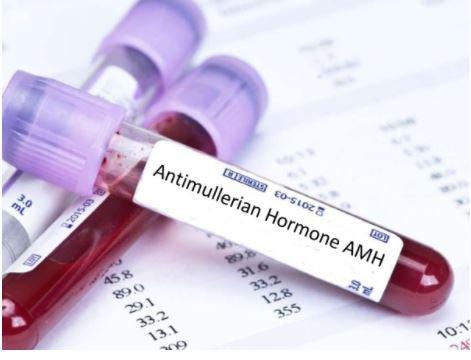 Kết quả chỉ số AMH 1.15 cơ hội thụ thai có cao không?