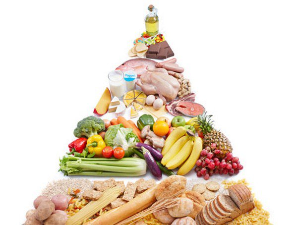 Tháp dinh dưỡng