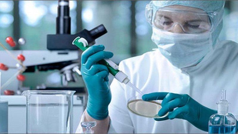 Phương pháp ghép tế bào gốc
