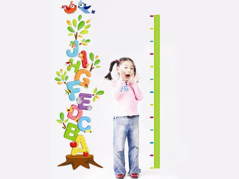 Trẻ 12 tuổi cần làm gì để phát triển chiều cao