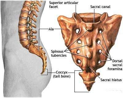 Quy trình chụp cộng hưởng từ cột sống thắt lưng cùng có tiêm thuốc đối quang từ