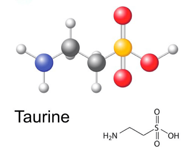 Taurine là gì? Lợi ích, tác dụng phụ và cách sử dụng