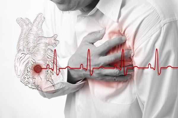 Chất béo bão hòa gây ra bệnh tim mạch
