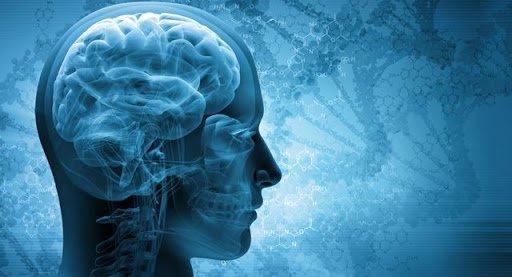 Như thế nào là chết não?