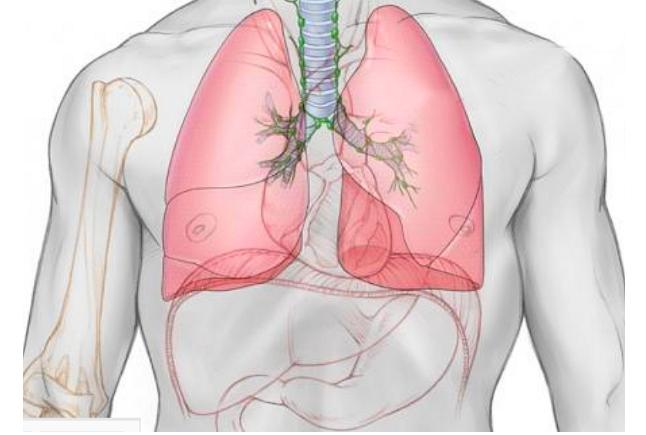 dung tích phổi