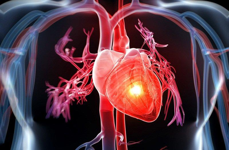 Hẹ giúp làm giảm nguy cơ mắc bệnh tim mạch