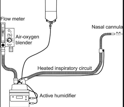 Cấu tạo của hệ thống oxy lưu lượng cao