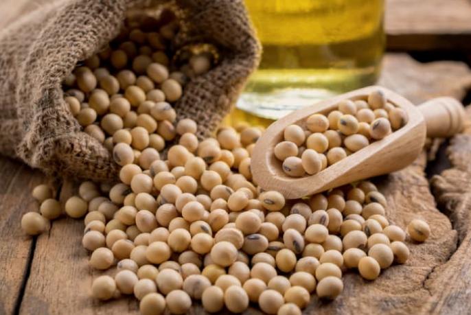 6 lợi ích ấn tượng của hạt đậu nành | Vinmec