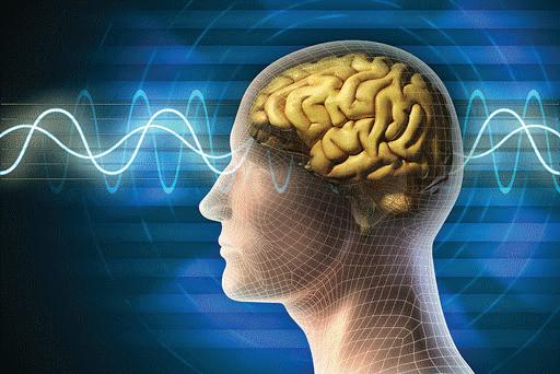 điện não thần kinh