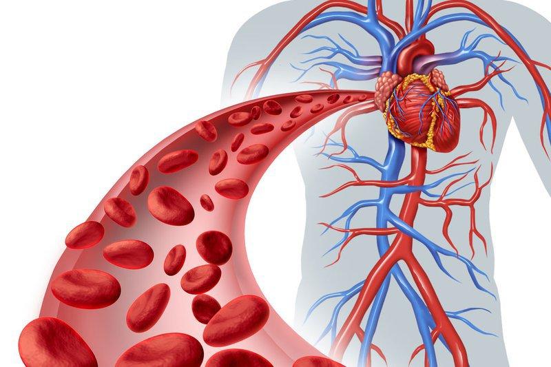 Cải thiện lưu lượng máu