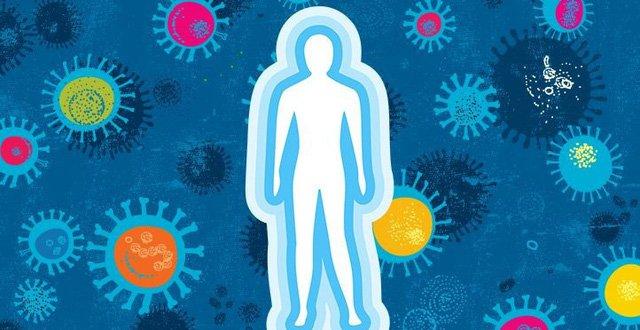 Bạn có biết: Cách hệ miễn dịch chiến đấu để bảo vệ cơ thể