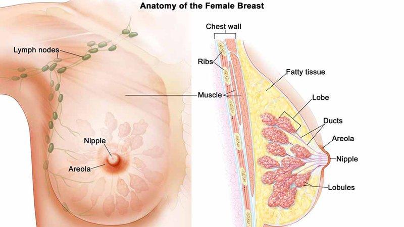 Thói quen xấu gây ung thư vú
