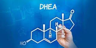 Nồng độ DHEA