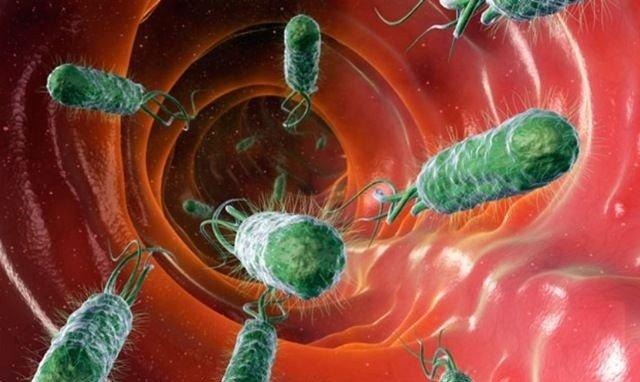 nhiễm H. pylori