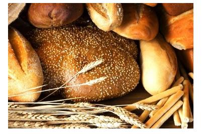 Lúa mì ,lúa mạch đen và lúa mạch.
