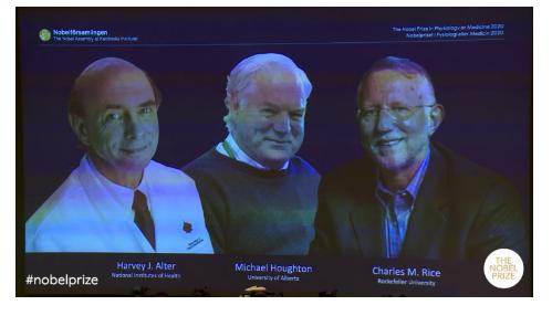 nhóm nghiên cứu ba người (Harvey Alter, Charles Rice từ USA, Micheal Houghton gốc UK, hiện sống ở Canada)