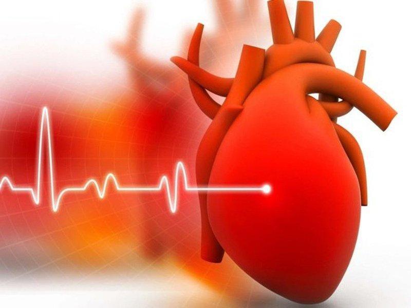 Siêu âm đánh giá sức căng cơ tim