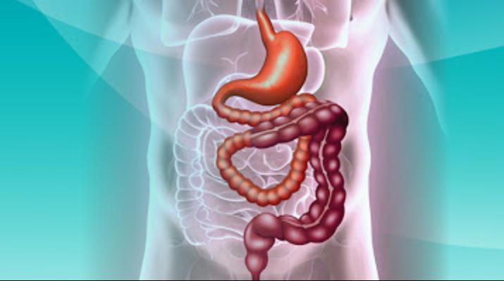 Hội chứng ruột ngắn
