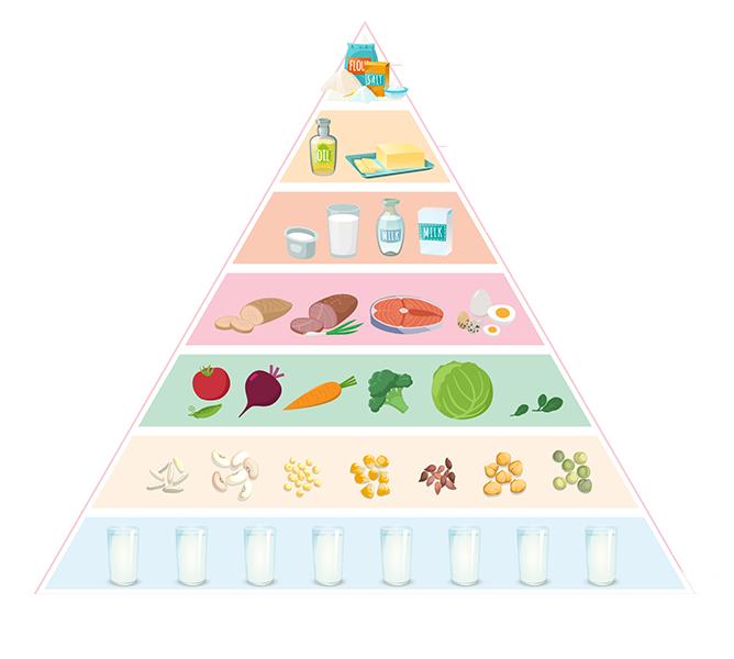 Tháp dinh dưỡng cho trẻ ăn dặm