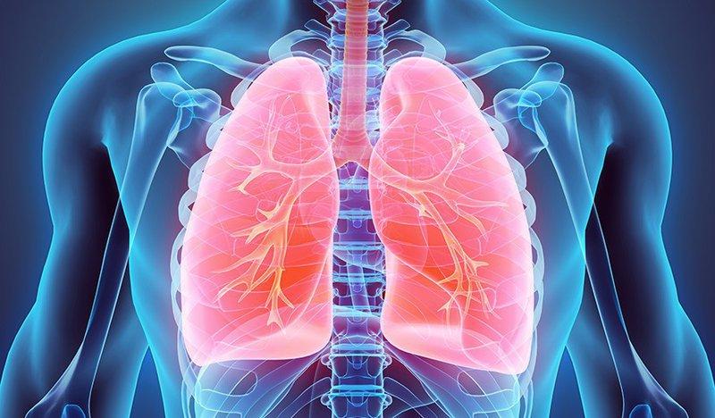 Đang điều trị lao màng phổi và ho nhiều khi bị cảm cúm là do đâu?