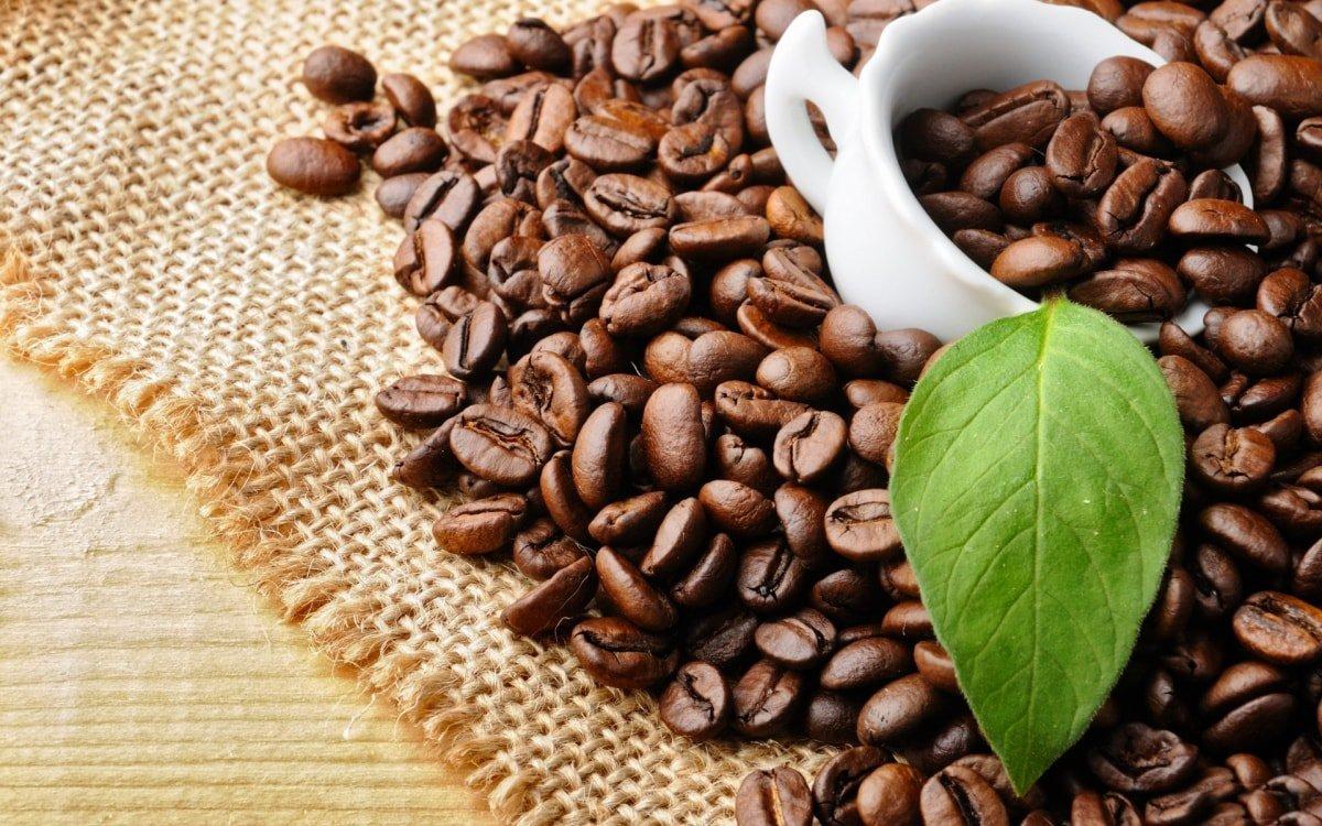 ứng dụng phần mềm bán hàng cafe