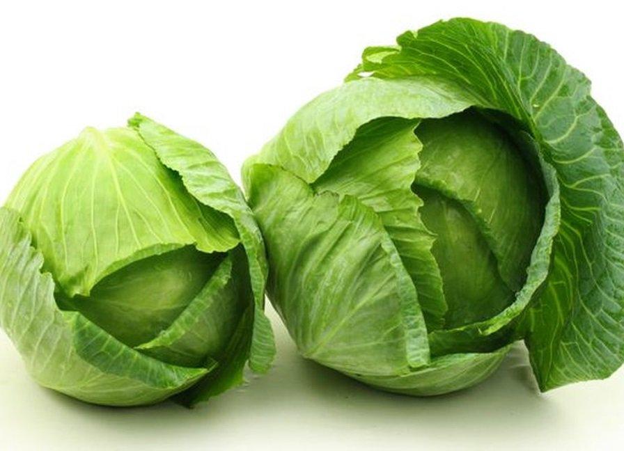 Ăn rau bắp cải