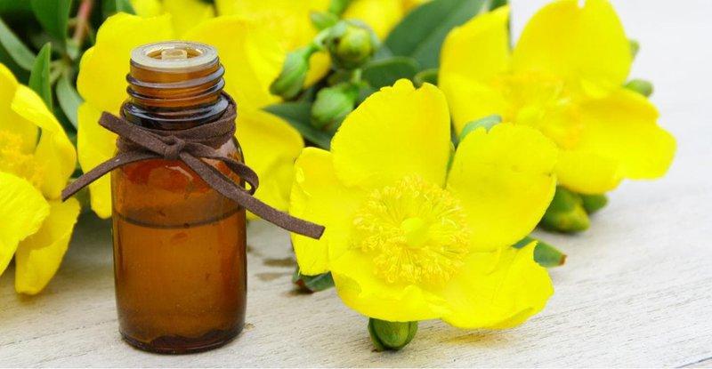 Ung thư tuyến giáp uống tinh dầu hoa anh thảo được không?