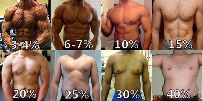 Tỷ lệ % mỡ cơ thể lý tưởng cho cơ thể