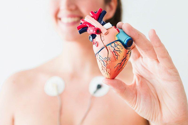 Vùng nhịp tim