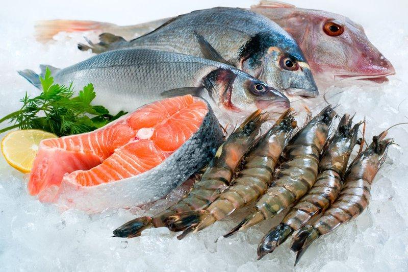 cho bé ăn các loại hải sản