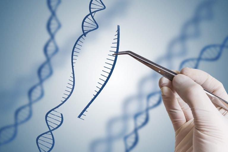 Liệu pháp gen là gì? Làm thế nào để nó hoạt động?