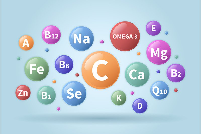 Mỗi loại vitamin và khoáng chất sẽ có thời gian, cơ chế và cách hấp thụ khác nhau