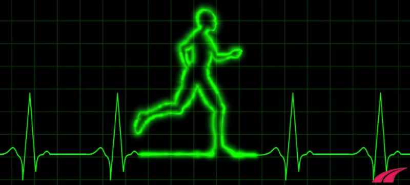 Nhịp tim giảm khi đi bộ là do đâu?