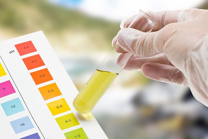 Trẻ 6 tháng tuổi có chỉ số protein 1+ sau điều trị khỏi nhiễm trùng tiểu có sao không?