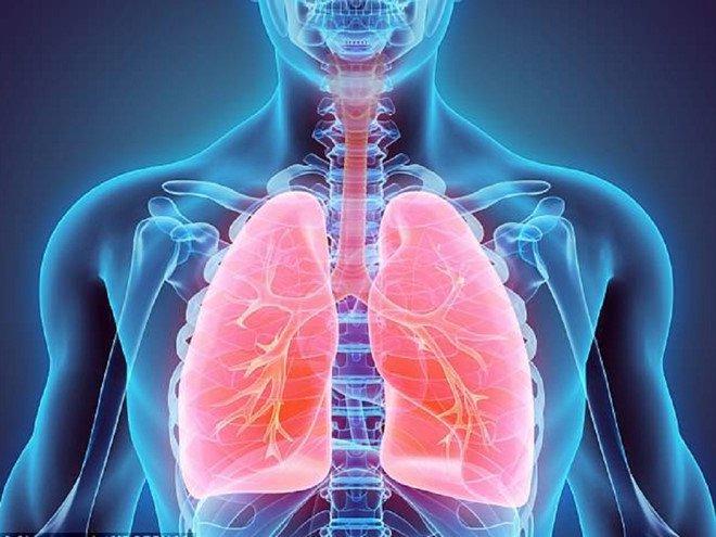 Nấm phổi