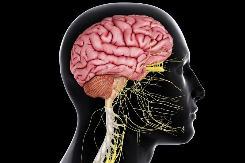 U não nguyên phát