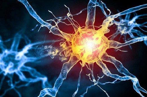Viêm đa dễ dây thần kinh