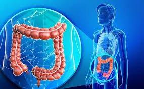 Chẩn đoán và điều trị hội chứng kích thích đại tràng?