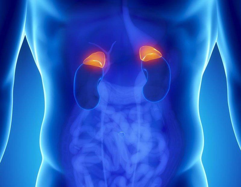 pheochromocytoma là gì