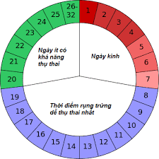 Xác định ngày rụng trứng khi chu kỳ kinh nguyệt kéo dài 3-4 tháng như thế nào?