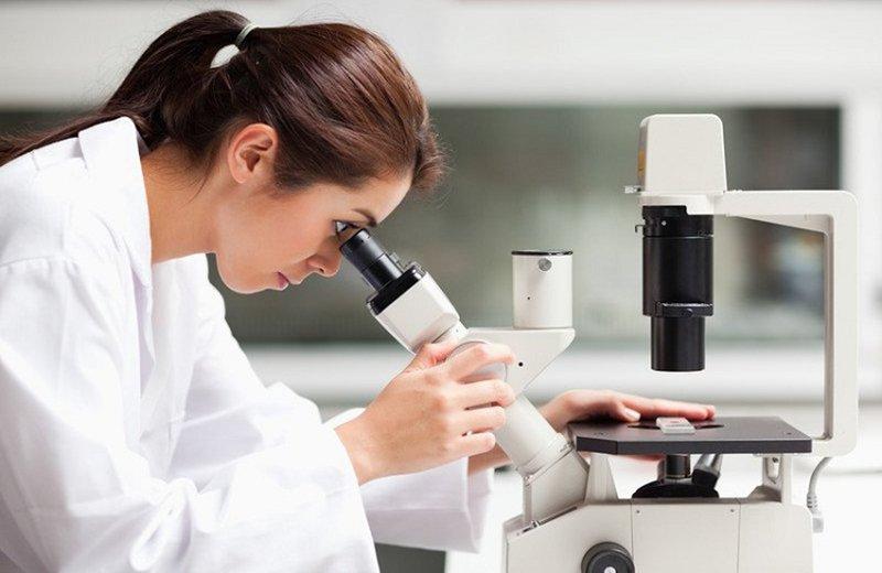 Xét nghiệm vi nấm nuôi cấy