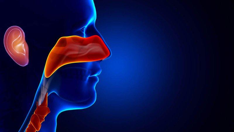 Chụp Xquang tai mũi họng