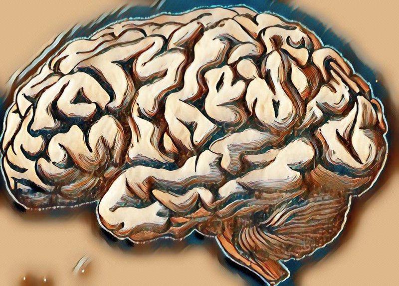 Thoái hóa chất trắng ở thái dương đỉnh đầu có nguy hiểm không?