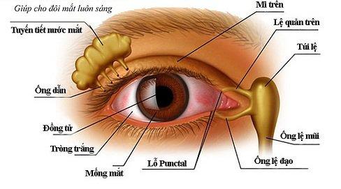 Mắt ngủ dậy có nhiều gỉ mắt bám dít mắt khắc phục thế nào?