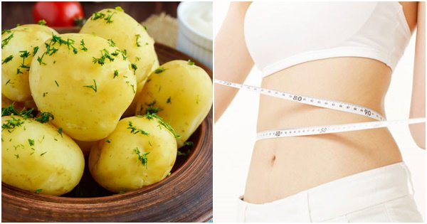 Ăn khoai tây có mập không?