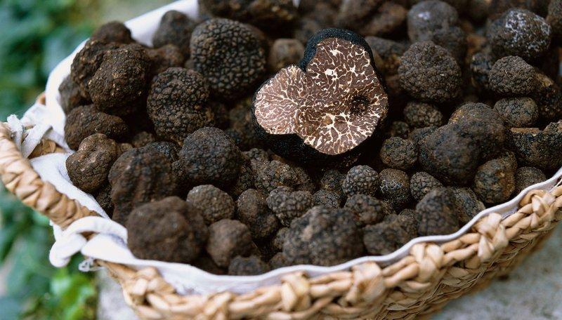 Lượng calo trong nấm Truffle