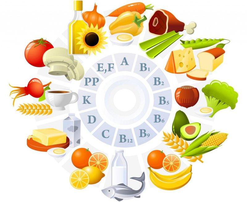 Vi chất dinh dưỡng có từ đâu?