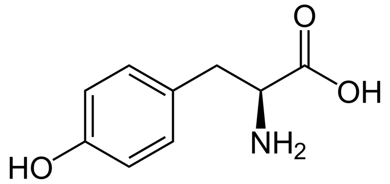 Tyrosine: Lợi ích, tác dụng phụ và liều lượng