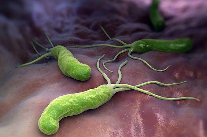 test nhanh tìm vi khuẩn HP